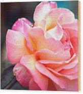 Buffum Rose Wood Print