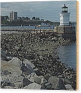 Bug Light Wood Print