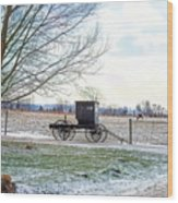 Buggy Alone In Winter Wood Print