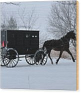Buggy On Winter Road Wood Print