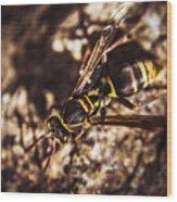 Bugs Life Wood Print