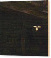 Bulb Wood Print