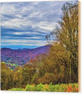 Bull Creek Valley Wood Print