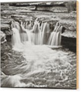 Bull Creek Water Run Wood Print by Lisa  Spencer