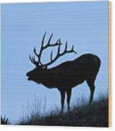 Bull Elk Silhouette Wood Print by Larry Ricker