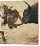 Bull Fight Wood Print