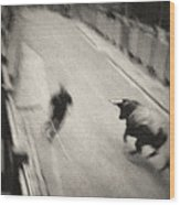 Bull Run 2 Wood Print