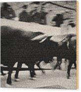 Bull Run 3 Wood Print