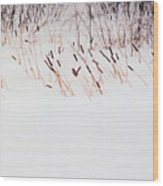 Bull Rushes In The Snow Db Wood Print