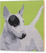 Bull Terrier Wood Print