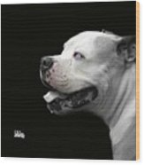 Bulldog Sando  Portrait  Wood Print