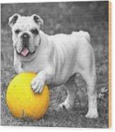 Bulldog Soccer Wood Print