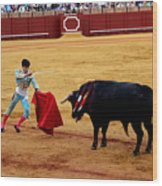 Bullfighting 22 Wood Print