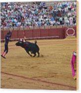 Bullfighting 35 Wood Print