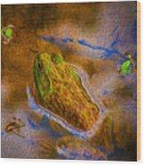 Bullfrog In Water Wood Print