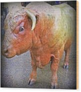 Bulls Eye Wood Print by Randall Weidner