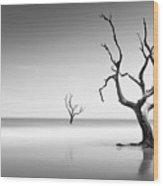Boneyard Beach Iv Wood Print