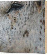 Bullseye Wood Print