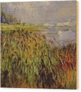 Bulrushes On The Banks Of The Seine 1874 Wood Print
