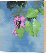 Bumble Bee 2 Wood Print