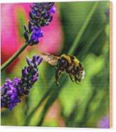Bumble Bee In Flight Wood Print