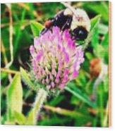 Bumble Bee Wood Print