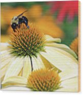 Bumble Bee On Top Wood Print