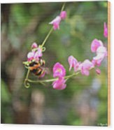 Bumble Bee1 Wood Print