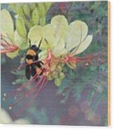 Bumblebee Before Dawn 2 Wood Print