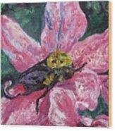 Bumblebee Digs In Wood Print