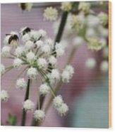 Bumblebee Gang Wood Print