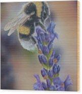 Bumblebee Nr3 Wood Print