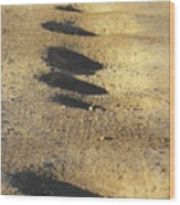 Bumps In The Road Wood Print