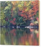 Bunganut Lake Maine Foliage 13 2016 Wood Print