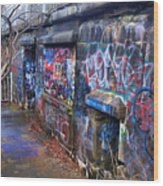 Bunkers Of Ft Wetherill Wood Print