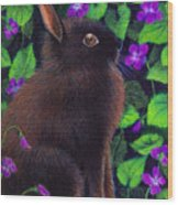 Bunny And Violets Wood Print