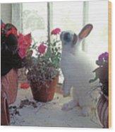 Bunny In Window Wood Print