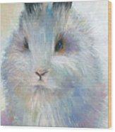 Bunny Rabbit Painting Wood Print