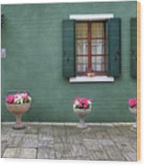 Burano Green Wood Print