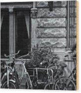 Burgandy Blur Wood Print