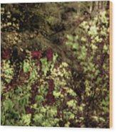 Burgandy Liliacs II Wood Print