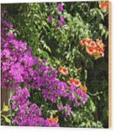 Burgazada Island Flower Color Wood Print