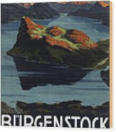 Burgenstock - Lake Lucerne - Switzerland - Retro Poster - Vintage Travel Advertising Poster Wood Print