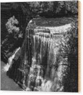 Burgess Lower Falls 2 Wood Print