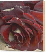 Burgundy Rose Wood Print