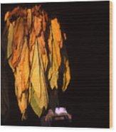 Burley Barn Wood Print