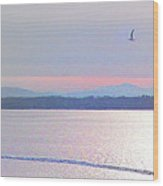 Burlington Breakwater South Lighthouse From Atop Battery Park Wall Detail #1 Wood Print