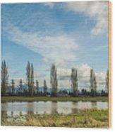 Burlington Fields  Wood Print