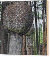 Burly Phantoms - Spruce Burls Beach One Olympic National Park Wa Wood Print