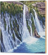 Burney Falls Wood Print by Donald Neff
